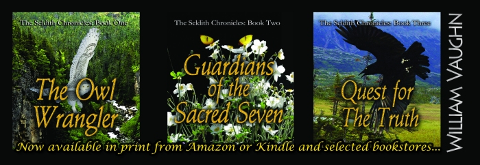 Seldith Chronicles 2x6_bookmark V4.0